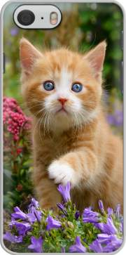 Cute ginger kitten in a flowery garden, lovely and enchanting cat Hoesje voor Iphone 6 4.7
