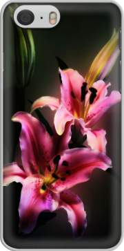 Painting Pink Stargazer Lily Hoesje voor Iphone 6s