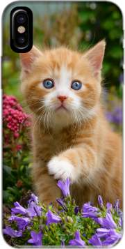 Cute ginger kitten in a flowery garden, lovely and enchanting cat Hoesje voor Iphone X / Iphone XS