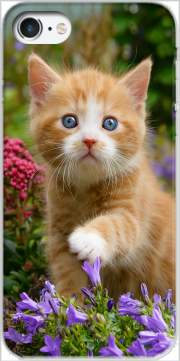 Cute ginger kitten in a flowery garden, lovely and enchanting cat voor Iphone 7 / Iphone 8