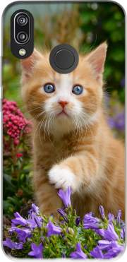 Cute ginger kitten in a flowery garden, lovely and enchanting cat voor Huawei P20 Lite
